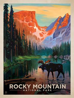 Rocky Mountain National Park: Moose in the Morning - Anderson Design Group has created an award-winning series of classic travel posters that celebrates the history and charm of America's greatest cities and national parks. Founder Joel Anderson directs a team of talented artists to keep the collection growing. This oil painting by Kai Carpenter celebrates the mighty wonders of Rocky Mountain National Park.