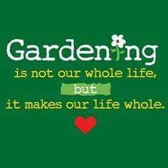 Nobody will ever understand the joy that gardening brings unless they are also into gardening.