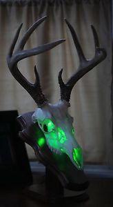 LED light  in a skull.                                                                                                                                                     More