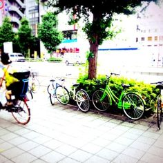 Kenichi Kamio - Let's ride bikes. from Today's piano piece Jul.23rd,2014