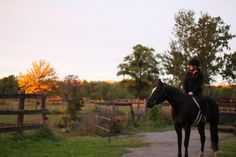 This is of my beautiful niece and her horse on a fall night