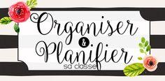 Dans la grande thématique de la planification et de l'organisation, j'intègre la gestion des élèves car cela se planifie. Il y a une gr...