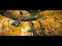 The Hobbit - Flight To The Carrock