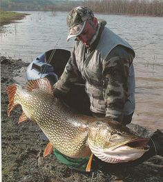 Monster pike