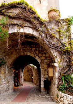 In Eze, France. Via my My Life In Stills