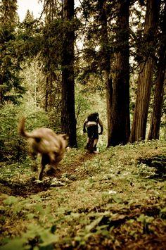 ♂ Outdoor Sport Mountain Bike  man dog forest nature