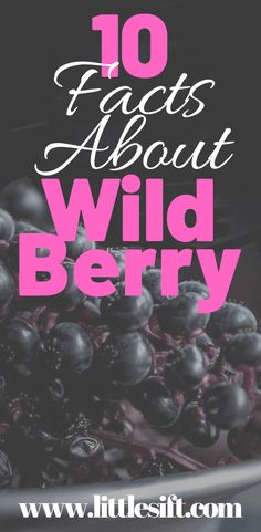 Wild berry is the healthiest fruits you may have in your daily meal, they are so tasty, high nutritional value, and get immense in wild berry benefits. Workout To Lose Weight Fast, Meal Plans To Lose Weight, How To Lose Weight Fast, Nutrition Plans, Nutrition Information, Maple Syrup Nutrition, Benefits Of Berries, Athletes Diet, Athlete Nutrition