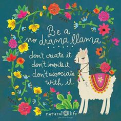 Be a no drama llama! Don't create it. Don't invite it. Don't associate with it! Alpacas, Classroom Quotes, Classroom Decor, Quotes Thoughts, Me Quotes, No Drama Quotes, Drama Queen Quotes, Music Quotes, Funny Quotes
