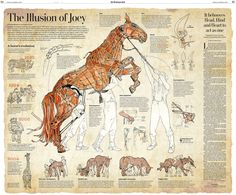 Double page graphic for the Arts Sunday Secton of the Washington Post describing the main components and operation of the Puppet used in the play war Horse. Watercolour, ink pens. A description of the project can be found here: merdeartiste.blogspot.com/2012/10/the-war-horse.html An interactive version here: www.washingtonpost.com/wp-srv/special/style/illusion-of-j... and a high resolution pdf here: www.washingtonpost.com/wp-srv/special/lif...