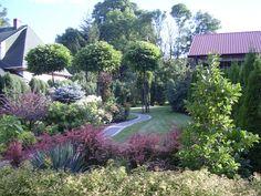 Ogród przydomowy.Greenpoint Ogrody Kielce Projektowanie ogrodów Kielce