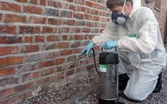 Complete Pest Control - Put your mind at rest and let the professionals at Complete Pest Control do the work