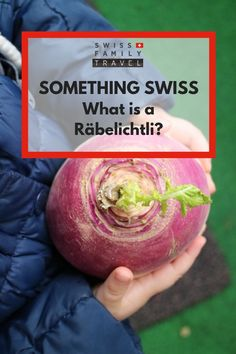 What is a Räbelichtli? The Swiss autumn lantern tradition. Swiss National Day, Cute Stories, Family Travel, Switzerland, Festivals, Lanterns, Cheer, Kindergarten, Facts