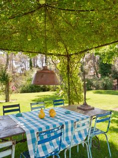 The vine covered pergola, light fitting, chairs, timber table, check tablecloth, green grass..... looks idyllic.....