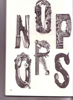 From ' Bizarre & Ornamental Alphabets | Flickr - Photo Sharing!