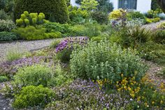 The Beth Chatto Gardens - Scree Garden