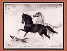 SNOW FROLIC(BLACK HAWKE AND LADY SUFFOLK) | The American Saddlebred Museum   Lithograph #65 of 70, Initialed 9 x 12 and Original Pencil Sketch on Onion Paper stamped from the GFM estate sale 16 x 24  SOLD $2,700 auction 2005