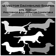 Hey, I found this really awesome Etsy listing at https://www.etsy.com/listing/183245397/12-dachshund-digital-vector-silhouette