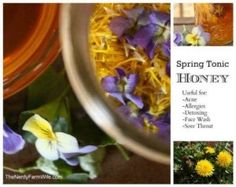 How to Make Spring Tonic Honey with Dandelions and Violets for seasonal allergies, detoxing (blood cleansing), face wash for acne, sore throat, among many others.