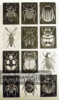 printmaking ideas linoleum scratch art idea Black and white. Chalk and charcoal. Kratz Kunst, Silkscreen, 5th Grade Art, Bug Art, Scratch Art, Ecole Art, Insect Art, Beetle Insect, Tatoo Art