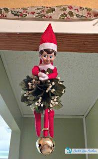 Coastal Mom Creations: Super Easy Elf on the Shelf Ideas Outdoor Play Kitchen, Christmas Elf, Xmas, Awesome Elf On The Shelf Ideas, The Elf, Mistletoe, Super Easy, Shelves, Holiday Decor