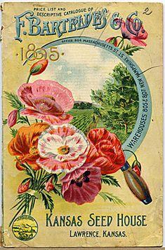F. Barteldes & Co.    Catalog Title:  Price List and Descriptive Catalogue of F. Barteldes & Co. (1894)