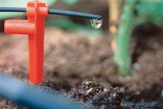 vanning grønne råd