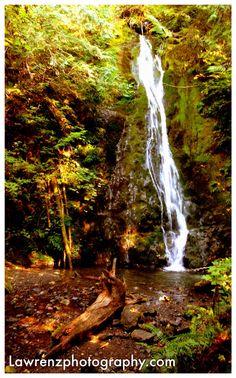 Madison Falls, Olympic National Park.