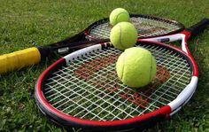Tennis, an Olympic sport, is played between two people or between two groups. The tennis player tries to throw the used ball into the court of the opposing team with the help of the rackets in his hand. Basic Tennis rules are easy to understand. Tennis Scores, Tennis Rules, Tennis Tips, Tennis Gear, Tennis Camp, Lawn Tennis, Wimbledon Tennis, Wimbledon 2016, Wimbledon Live