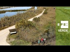 La Albufera de Valencia, tesoro de la Red Natura 2000