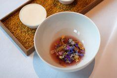 Rhubarb. Spring flowers, rose hip tea and bee wax ice cream. (Kofoed)