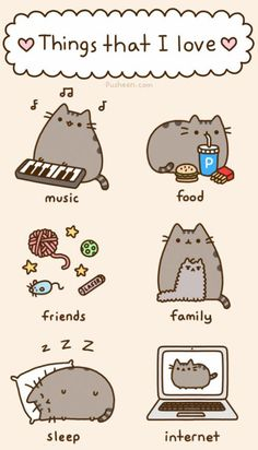 Pusheen Cat and I have similar loves