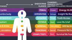 Lucky Number 7: From Chakra's to Sin's, This Infographic Shows Us How Everything is Interconnected | Spirit Science