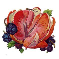 victorian scrap fruit