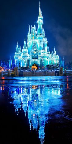Oh how I wish to see Cinderella's  castle while it is adorned for Winter...