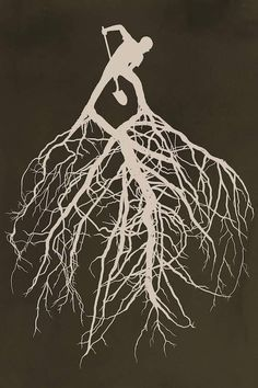 I like the idea of having the roots coming out of an object (brainstorm other objects) other than just text becoming one with nature Canvas Wall Art, Canvas Prints, Art Prints, Roots Logo, Design Graphique, Brainstorm, Art Plastique, Tree Art, Zentangle