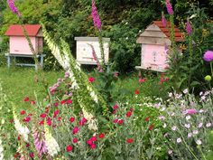 The Natural Beekeeping Trust - Sustainable, bee centred beekeeping | Beautiful…
