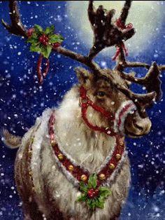 Hello Everyone ♡ Frozen Christmas, Christmas Wishes, Christmas Art, Winter Christmas, Beautiful Christmas, Vintage Christmas Cards, Christmas Pictures, Gifs, Xmas Gif
