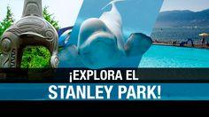 De belugas a tótems: explorando el Stanley Park de Vancouver