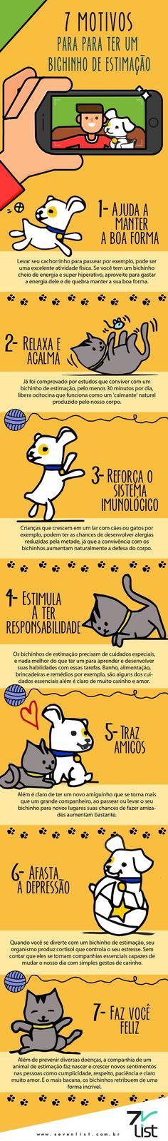 7 motivos para ter um animal de estimação