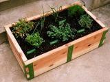 SR Raised Garden Kit: Gardenista