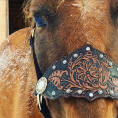 Bronc licol cheval licol amure en cuir repoussé avec par TravelingW