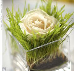 New Ideas For Diy Wedding Centerpieces Spring Limes Unique Wedding Centerpieces, Flower Centerpieces, Flower Arrangements, Wedding Decorations, Table Decorations, Floral Arrangement, Diy Wedding, Wedding Flowers, Wedding Ideas