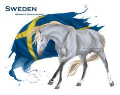 Horse Hetalia:  Sweden by MUSONART