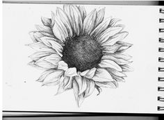 Sunflower tattoo idea, if I was brave enough!