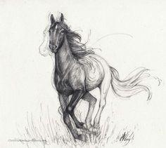 Free Spirit II by ChristinaMandy on DeviantArt Horse Drawings, Cool Art Drawings, Animal Drawings, Drawing Ideas, Spirit Tattoo, Yarn Painting, Animal Art Prints, Watercolor Horse, Animal Sketches