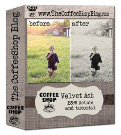 CoffeeShop Velvet Ash B