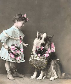 A girl and her dog... and pink flowers