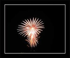 reply Fireworks Animation, Best Fireworks, Gif Files, Animals And Pets, Display, This Or That Questions, Fun, Pets