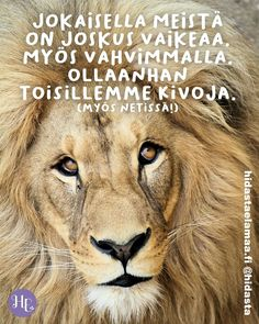 Lion, Animals, Quotes, Leo, Quotations, Animales, Animaux, Lions, Animal