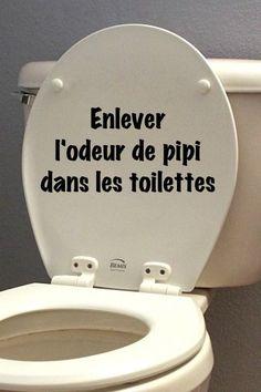 enlever l'odeur de pipi facilement dans les toilettes remove the smell of pee easily in the toilet Trucs et astuces